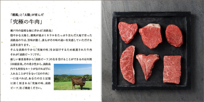 beef-pamphlet-spread